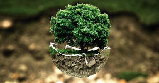 Fondimpresa: Avviso 1/2017 – Ambiente e Territorio