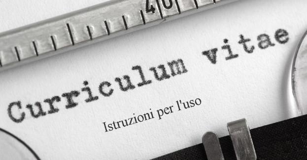 curriculumvitae