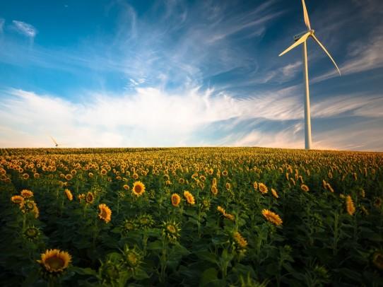 Fondimpresa, nuovo Avviso 2/2021 per Green Transition e Circular Economy