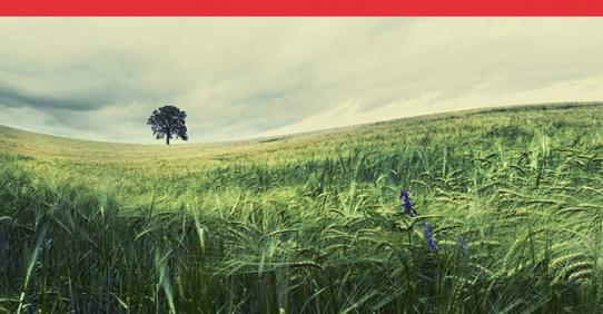 Agg. RSPP – Aspetti e rischi ambientali in azienda