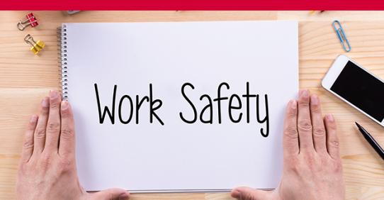 Sicurezza Lavoratori – Rischio Basso (ed. marzo)